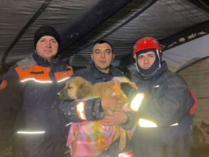 Firefighters-and-Puppy-Istanbul-Fire-Department